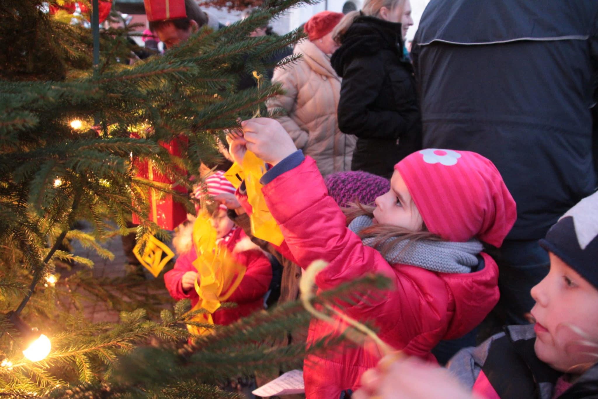 Alle Jahre wieder Das Weihnachtsbaumfest (19)