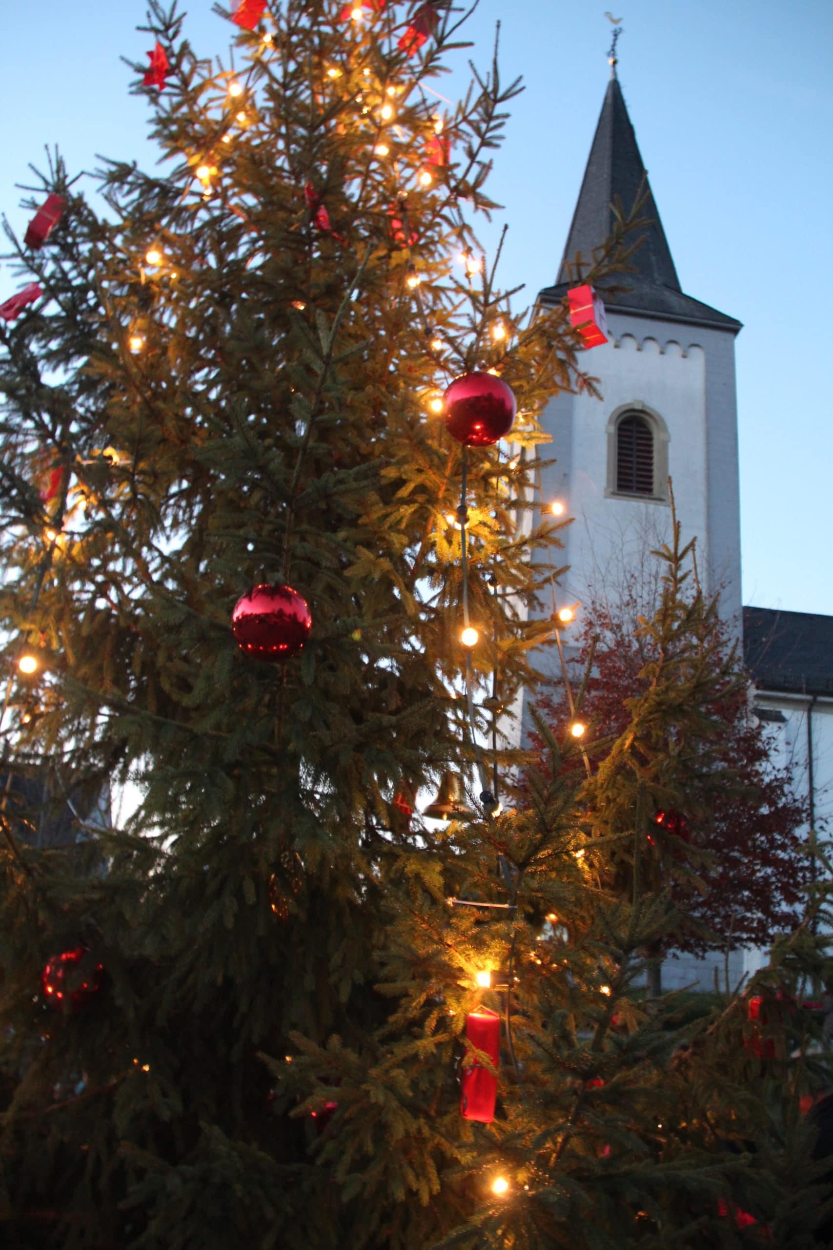 Alle Jahre wieder Das Weihnachtsbaumfest (31)
